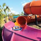 Riding the Wave of Success: Waterparks Find New & Creative Ways to Stay Afloat