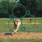 Four-Legged-Friendly Parks: Well-Planned Dog Parks Unite the Community, Whether Canine or Human