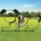 Parks Gone to the Dogs: Planning & Programming a Park for Pooches