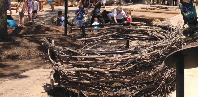 Changing the Landscape: Natural Materials, Adventure Courses Top Design Trends
