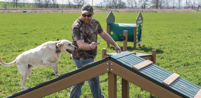 Dog Day Afternoons: Building Your Dog Park, From Start to Finish