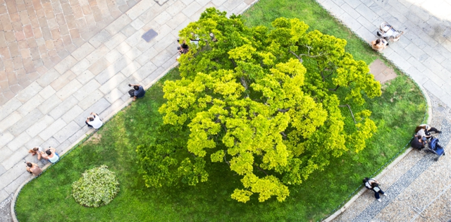 Hindsight Is 2020: Landscape Trends That Are Making a Difference